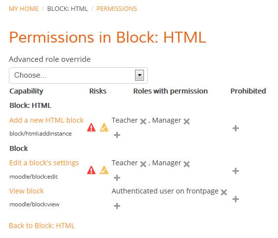 Screenshot - user permissions in Block HTML